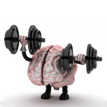 brain-fitness-intro