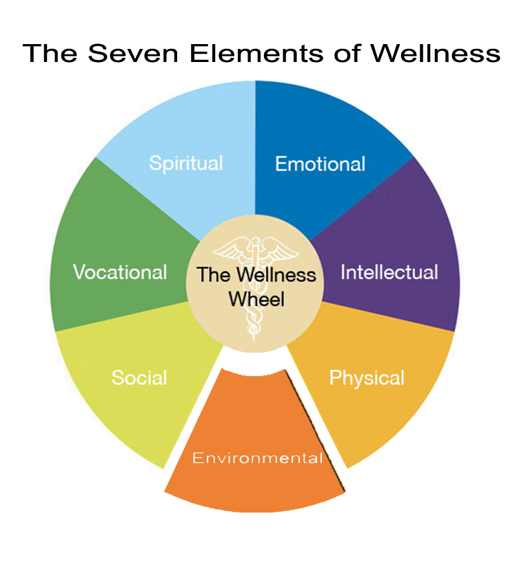 The Seven Dimensions Of Wellness For Residents And Staff
