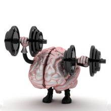 brain-fitness-intro